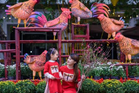Lễ hội hoa xuân lớn nhất miền Bắc Tết Đinh Dậu